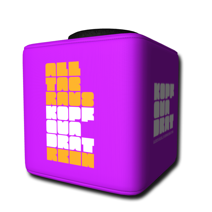 Die Catchbox mit individueller Grundfarbe und eigenen Logos